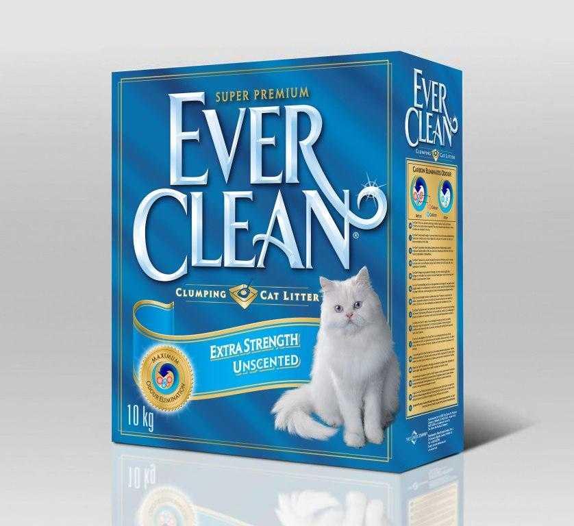 Чем кормить котенка от двух месяцев и старше?